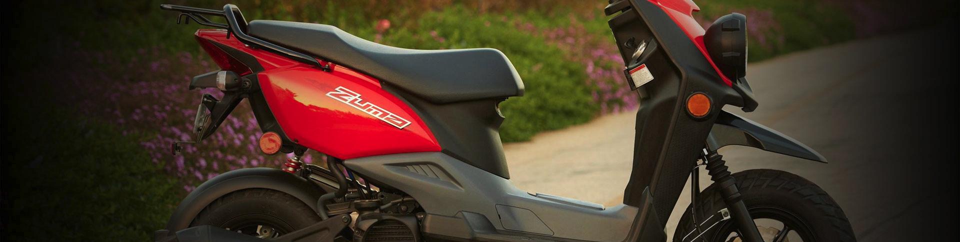 Moped deler danmark